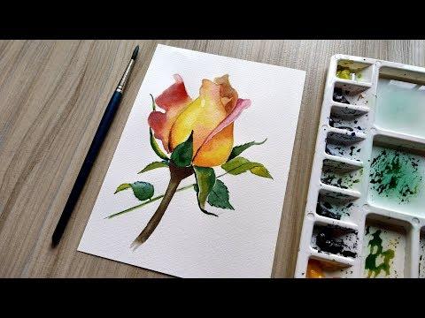 watercolor painting rose tutorial by david
