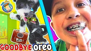 SAYING GOODBYE TO PUPPY & Hello to Mikes New BRACES! (FUNnel Vision Vlog)