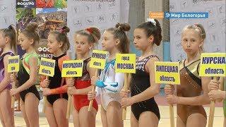 Соревнования Светланы Хоркиной стартовали в Белгороде