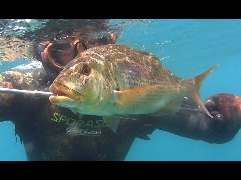Pesca in balandino grande