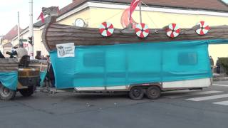 preview picture of video 'HD_2012_Faschingsumzug Himberg'