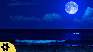 Deep Sleep Music, Peaceful Music, Relaxing, Meditation Music, Sleep Meditation Music, 8 Hour, ✿2781C