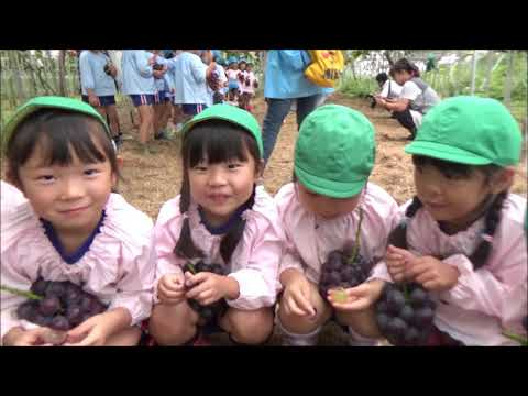 Tomobe Kindergarten