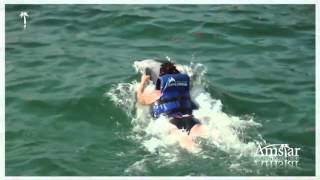 Swim with Dolphins in Punta Cana | Amstar dmc