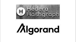 Hedera Vs Algorand