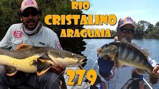 Programa Fishingtur na TV 279 - Rio Cristalino e Araguaia