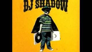 Gambar cover DJ shadow   Organ Donor