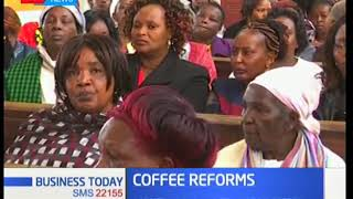 Politicians now plead with Nyeri Coffee farmers not to uproot plants