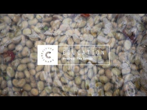 ProDev: The Series - Fermentation