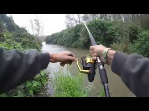A quello che fisserà la pesca del 2015