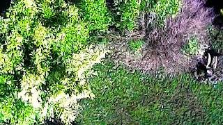 Vidéo avec un drone Silverlit Spy Racer FPV WI-FI