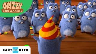 Grizzy I Lemingi | Urodziny Leminga | Boomerang
