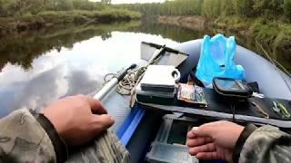 Рыбалка на пижме в борке