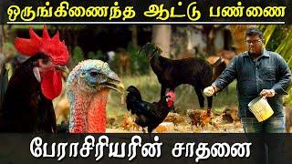 goat farming in tamilnadu in tamil - TH-Clip