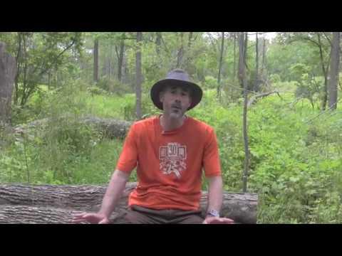 Tilley Hiker's Hat – Tested + Reviewed