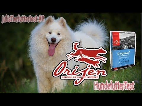 ORIJEN Hundefutter im Test | Trockenfutter für Hunde | JulisTierfuttertest #8 | Review
