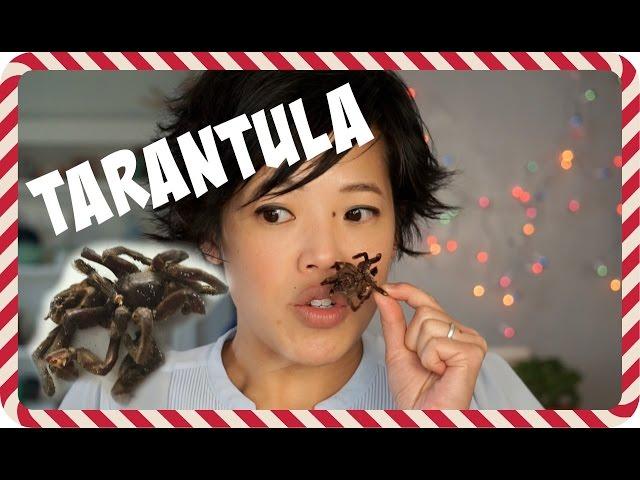 Day 3: Zebra Tarantula - 5 Days of Bug Eating
