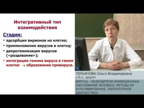 Гепатоз печени причины и лечение