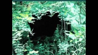 The Angels Of Light - New Mother (Full Album)