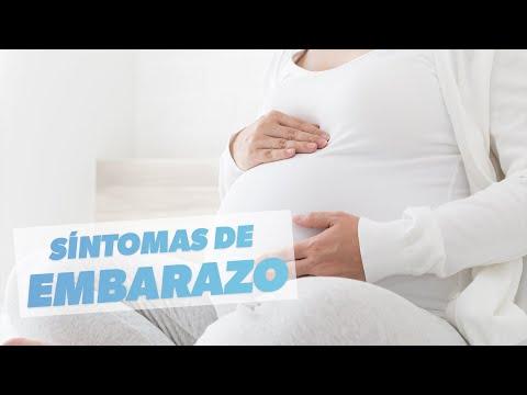 04b0e8686 Imagem ilustrativa do vídeo  Primeros síntomas de embarazo