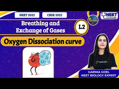 Sankalp: Breathing and Exchange of Gases L-2 : Oxygen Dissociation Curve | NEET Toppers | Garima G.