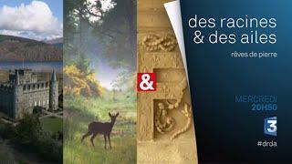 DRDA : Rêves de pierre – Bande-annonce