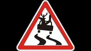 БЕРЕГИСЬ!! Оленей на дороге !🦌