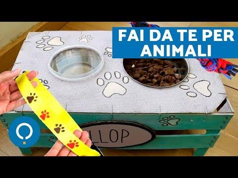 FAI DA TE per cani e gatti - Idee RICICLO creativo per animali