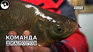 Диалоги о рыбалка ловле лещей