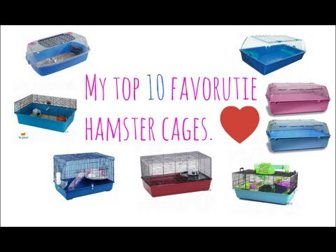 Download My Top 10 Favourite Hamster Cages. Mp4 HD Video and MP3