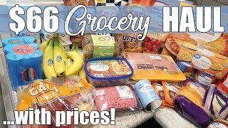 $66 Walmart Grocery Delivery Haul | January 2020