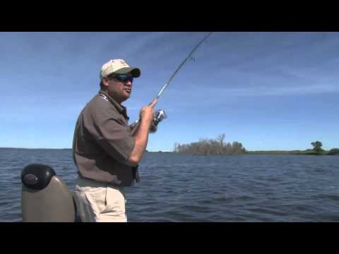 Fish Ed. How to Cast Crankbaits for Shallow Walleyes