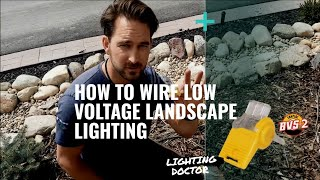 How to Wire Low Voltage Landscape Lighting with Wiring Diagram