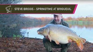 Steve Briggs   Springtime At Brigueuil