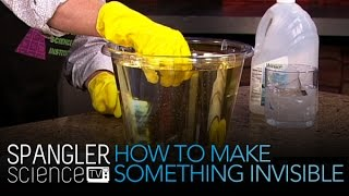 How To Make Something Invisible - Cool Science Experiment