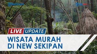 Menikmati Menginap di Rumah Pohon Tengah Hutan ala New Sekipan, Mulai Rp20 Ribu dan Wahana Lengkap