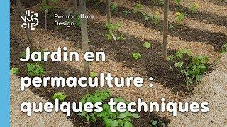 Exemple de techniques pour un jardin potager en permaculture