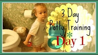 3 Day Potty Training: Day 1 (w/ 2 Year Old Boy)