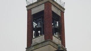 preview picture of video 'Le campane di Paderno Dugnano (2)'