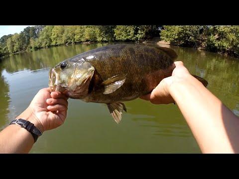 oregon bass fishing august 2014 – rapala