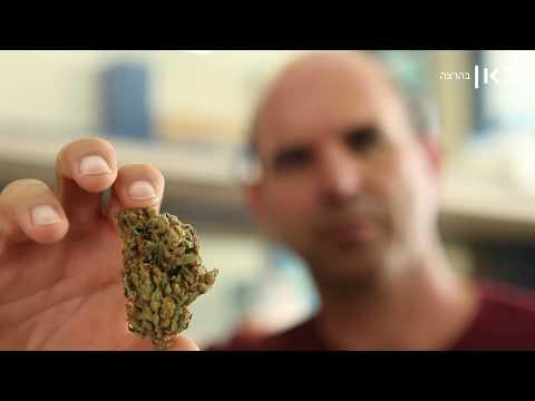 צוות החוקרים הישראלי הזה עומד לשנות את אופן הטיפול בסרטן...