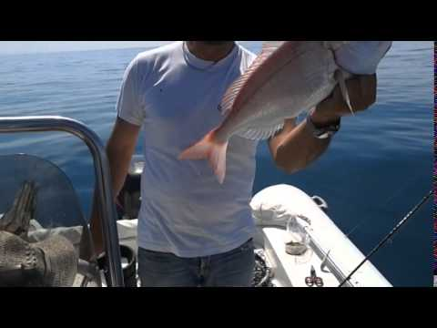 La pesca sul campo
