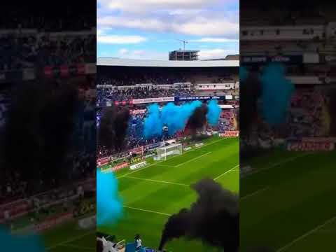 """""""Recibimiento Resistencia Albiazul vs León"""" Barra: La Resistencia Albiazul • Club: Querétaro"""