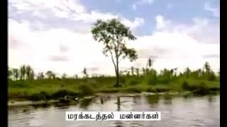 Varalatrin Marupakkam Promo-May 20 to 24-Sathiyam Tv