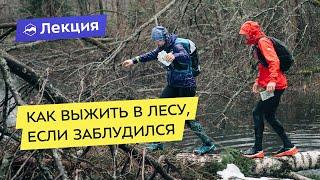 Как выжить в лесу, если вы заблудились