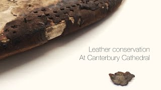 Leather Conservation