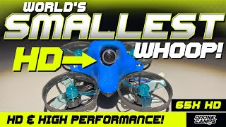 WORLD'S SMALLEST HD DRONE! - Betafpv 65X HD - Review & Flights