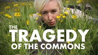 The Tragedy Of The Commons | Shed Science