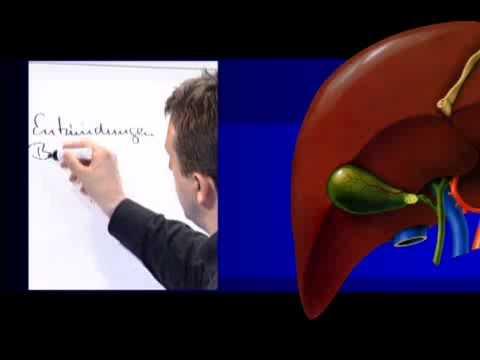 Die Wirkung auf den menschlichen Insulin bei Diabetes mellitus Typ 2