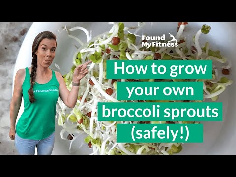 , title : 'How to Grow Broccoli Sprouts